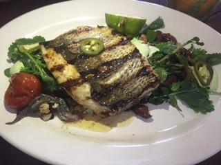 Hartwood Robalo Fish