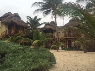 Four beachfront thatched-roof palapas